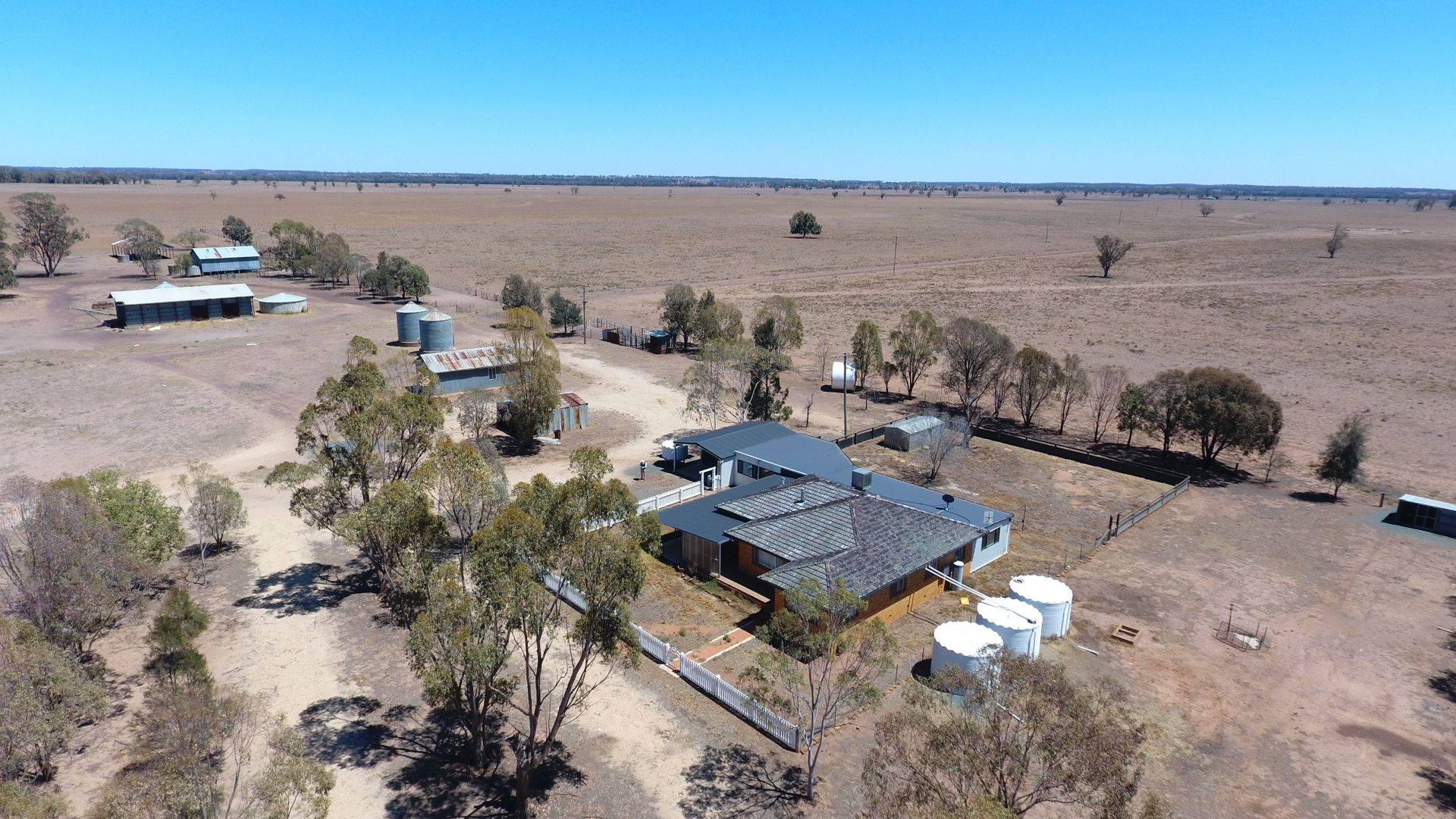 """""""Argyle Downs"""" 44 Woodford Road, Trundle NSW 2875, Image 1"""