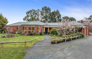 Picture of 2 Gleno Court, Cardigan VIC 3352