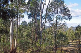 Picture of Lot 380 New Station Creek Road, Cathcart NSW 2632