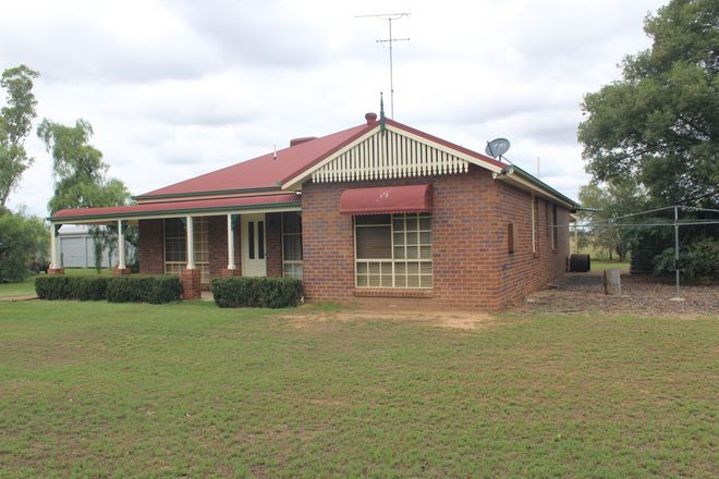 "Picture of "" Hurford Downs"", GOONDIWINDI QLD 4390"