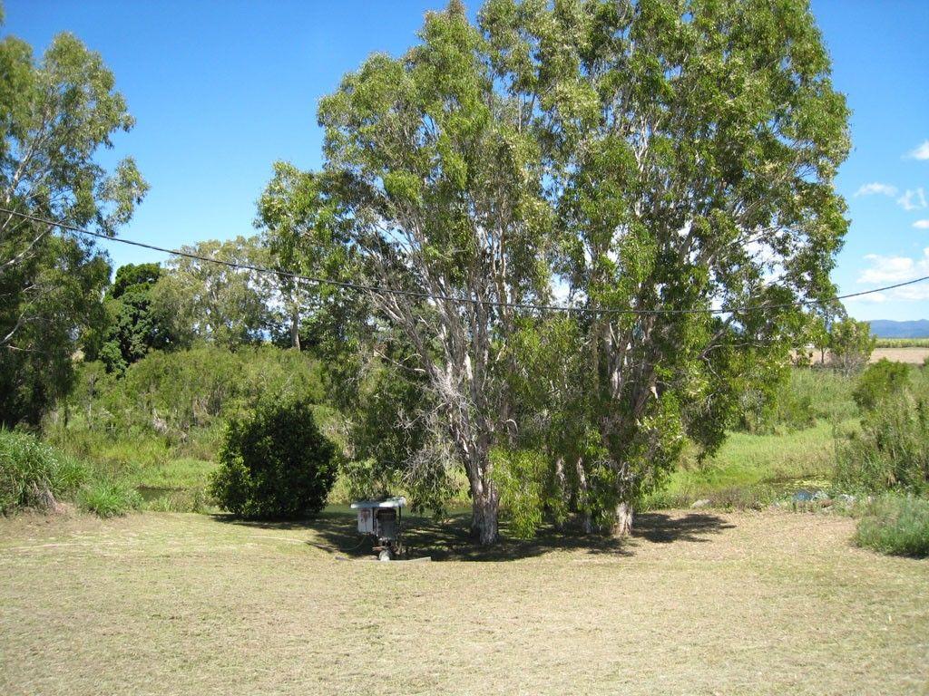 Up River Road & Koolachu Road, Proserpine QLD 4800, Image 2