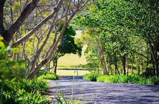 103B Strongs Road, Jaspers Brush NSW 2535