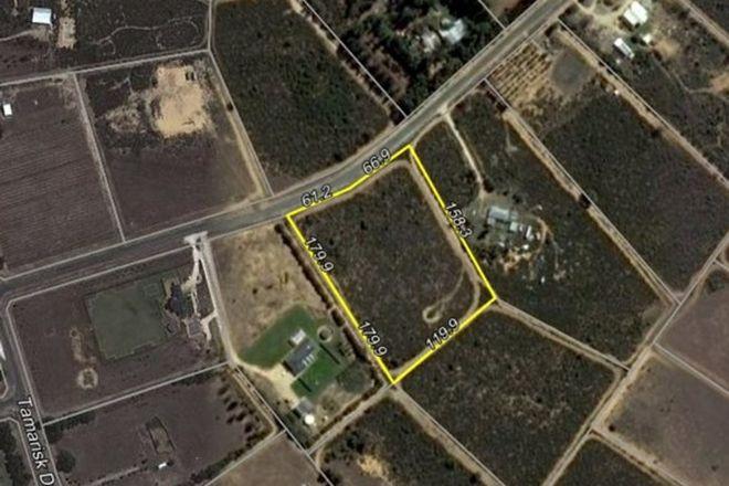 Picture of Lot 126 Paperbark Avenue, GABBADAH WA 6041