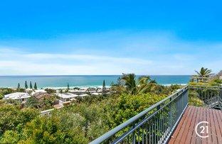 Picture of 44 Bryan Street, Sunshine Beach QLD 4567