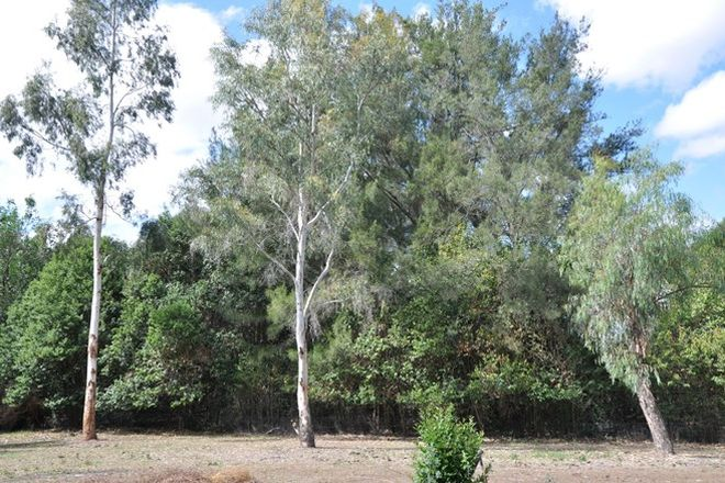Picture of Lot 11-12 Frederick Street, WOOLOMIN NSW 2340