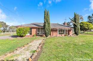 Picture of Lot 1, 73 Jollys Road, Teesdale VIC 3328