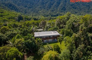 Picture of 122 Forest Creek Road, Daintree QLD 4873