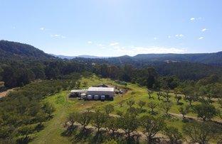 484 Gwynne Road, Georgica NSW 2480