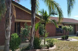 Picture of 16 Silkes Rd, Paradise SA 5075