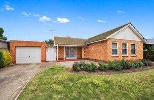 Picture of 15 Lucerne Grove, Findon SA 5023