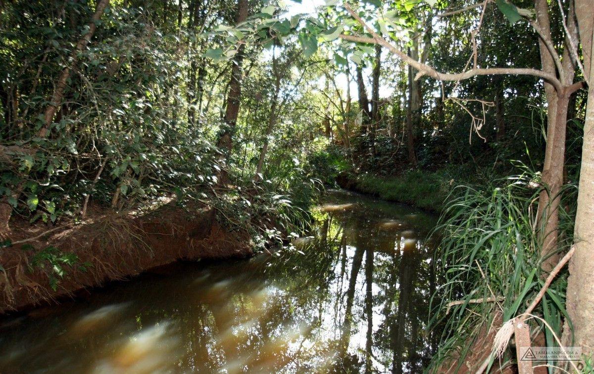Yungaburra QLD 4884, Image 2