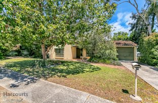 Picture of 13 McPharlin Avenue, Redwood Park SA 5097