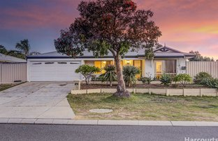 Picture of 18 Trephina Mews, Clarkson WA 6030