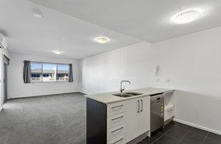Picture of 205/24 Philip Hodgins Street, Wright ACT 2611