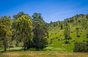 Picture of 444 Fernhills Road, Sheans Creek VIC 3666