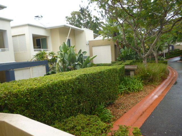 4142/1 Ross Street Royal Pines, Benowa QLD 4217, Image 0