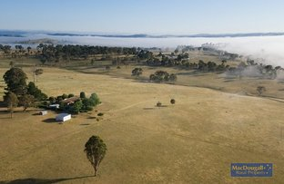 Picture of 1322 Castledoyle Rd, Armidale NSW 2350