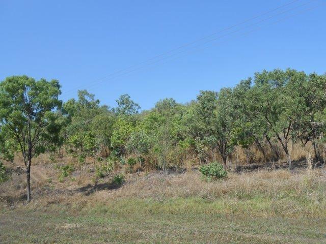 Stuart Highway, Coomalie Creek NT 0822, Image 2