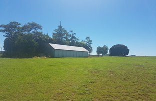 Picture of Gillies Range Road, Atherton QLD 4883