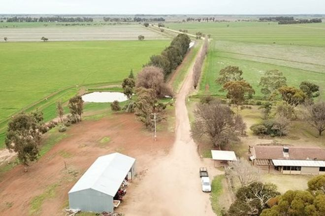 Picture of Farm 528 & Farm 224 Mercer Rd, COLEAMBALLY NSW 2707