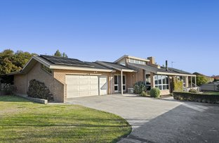 Picture of 7 Callistemon Court, Elliminyt VIC 3250