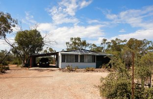 Picture of WLL 15044 Three Mile, Lightning Ridge NSW 2834