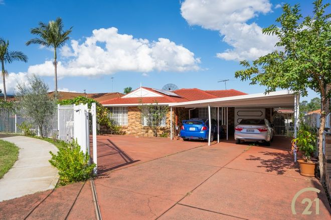 Picture of 13 Torwood Place, ST JOHNS PARK NSW 2176