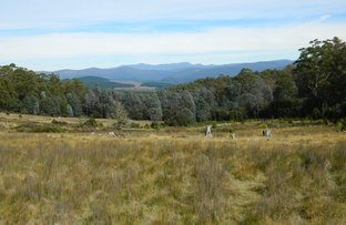 Picture of Lot 1  Crosswells Road, Mount Lloyd TAS 7140