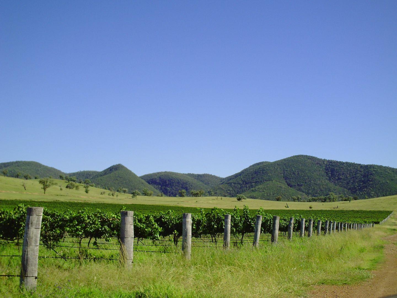 Tenterfield NSW 2372, Image 2
