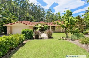 Picture of 3 Ferntree Court, Kew NSW 2439