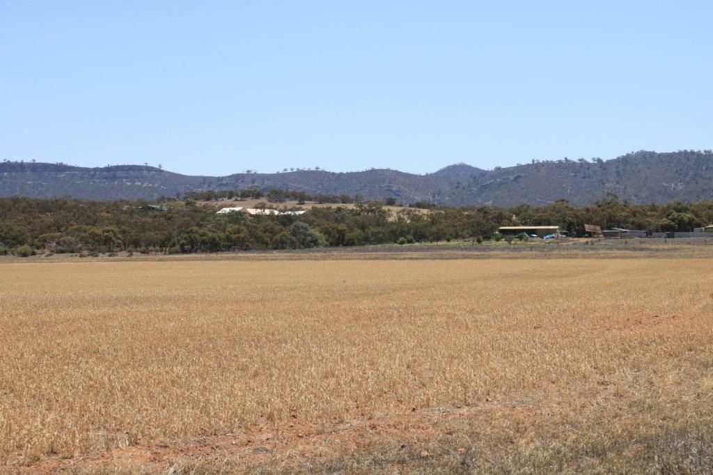 Sections 227, 229, 250 & 252 Pepper Tree Lane/Quarry Road, Quorn SA 5433, Image 0
