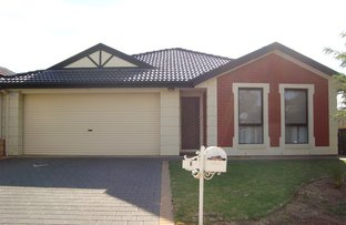 Picture of 6 Burton Avenue , Windsor Gardens SA 5087