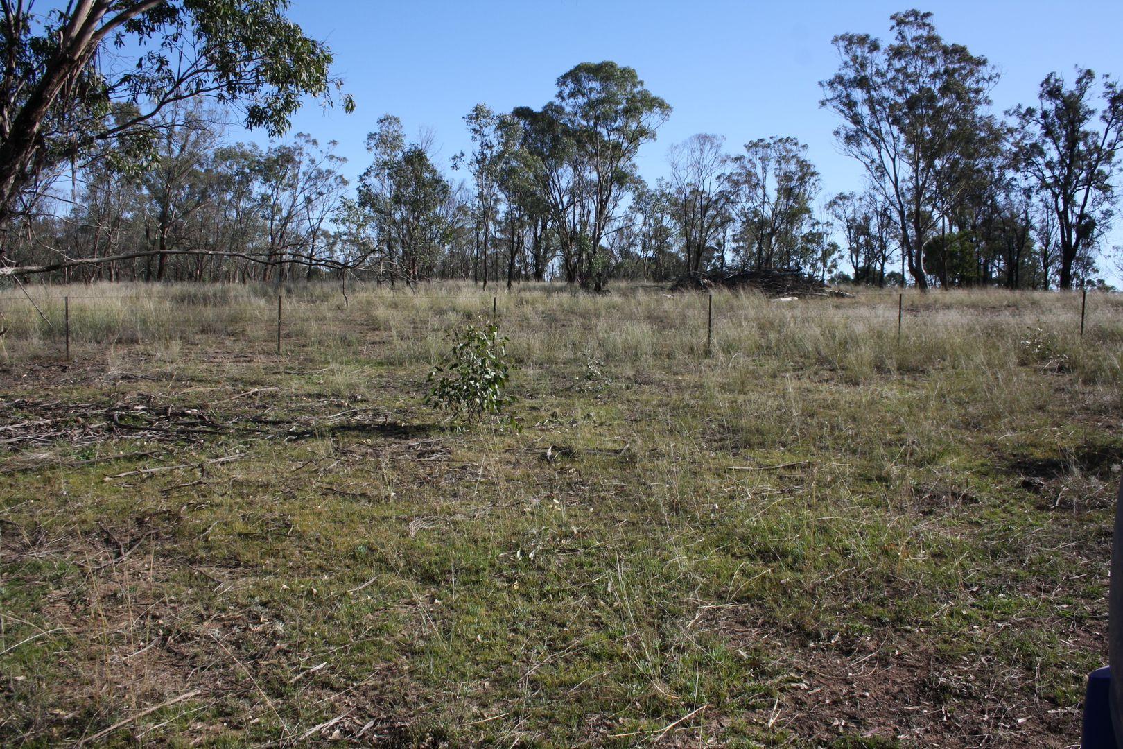 Warwick QLD 4370, Image 2