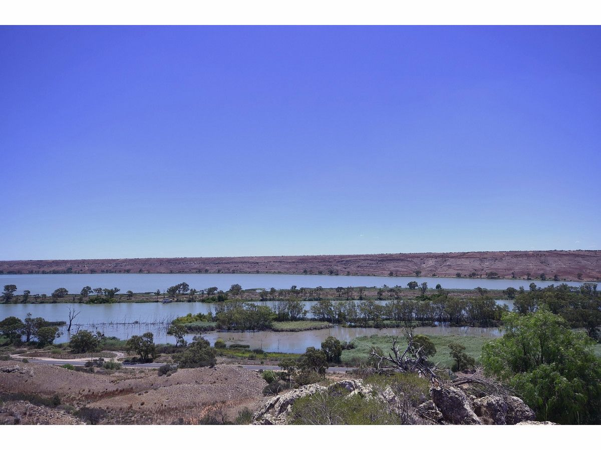 Lot 31 East Front Road, Younghusband SA 5238, Image 1