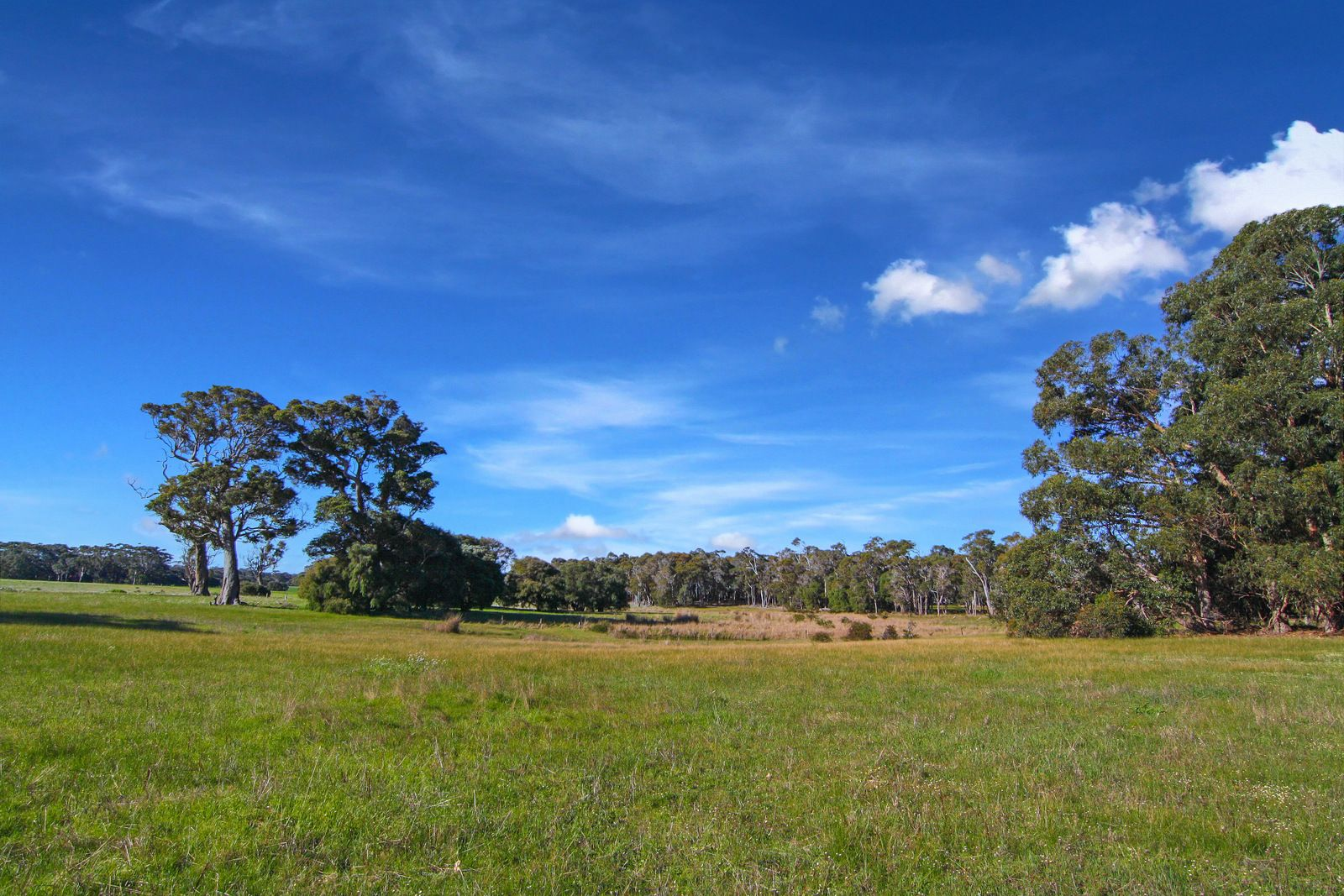 Lot 3070 Vansittart Road, Karridale WA 6288, Image 1