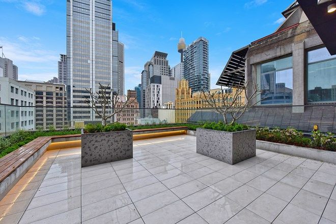 Picture of Lvl 13/161 Clarence Street, SYDNEY NSW 2000