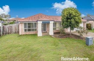 15 Wollemi Court, Morayfield QLD 4506