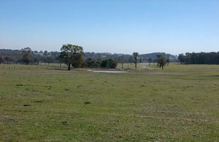 Picture of Yangoora Road, Garland NSW 2797