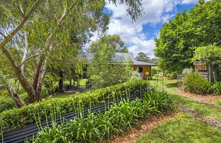 Picture of Upper Bobo Road, Brooklana NSW 2450