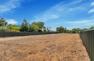 Picture of 50 Paternoster Road, Reid SA 5118