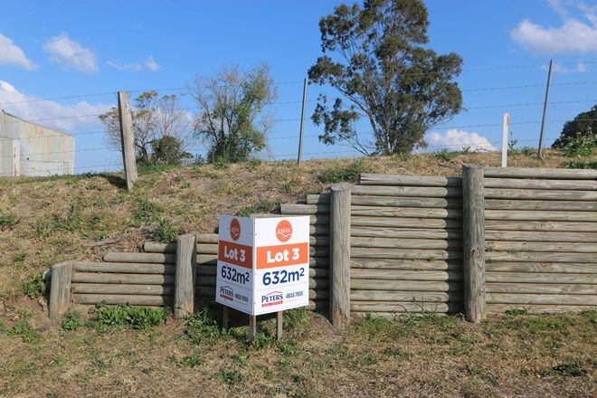 Picture of Lot 3 Bolwarra Vista, BOLWARRA NSW 2320