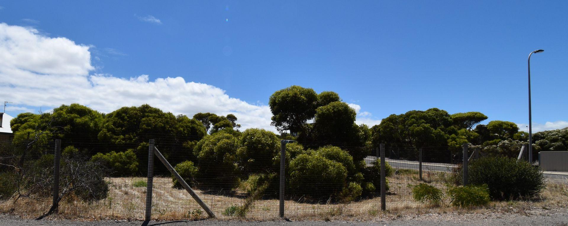 2 Eucalyptus Court, Marion Bay SA 5575, Image 1