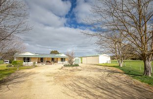 Picture of 64b Wilkins Road, Naracoorte SA 5271