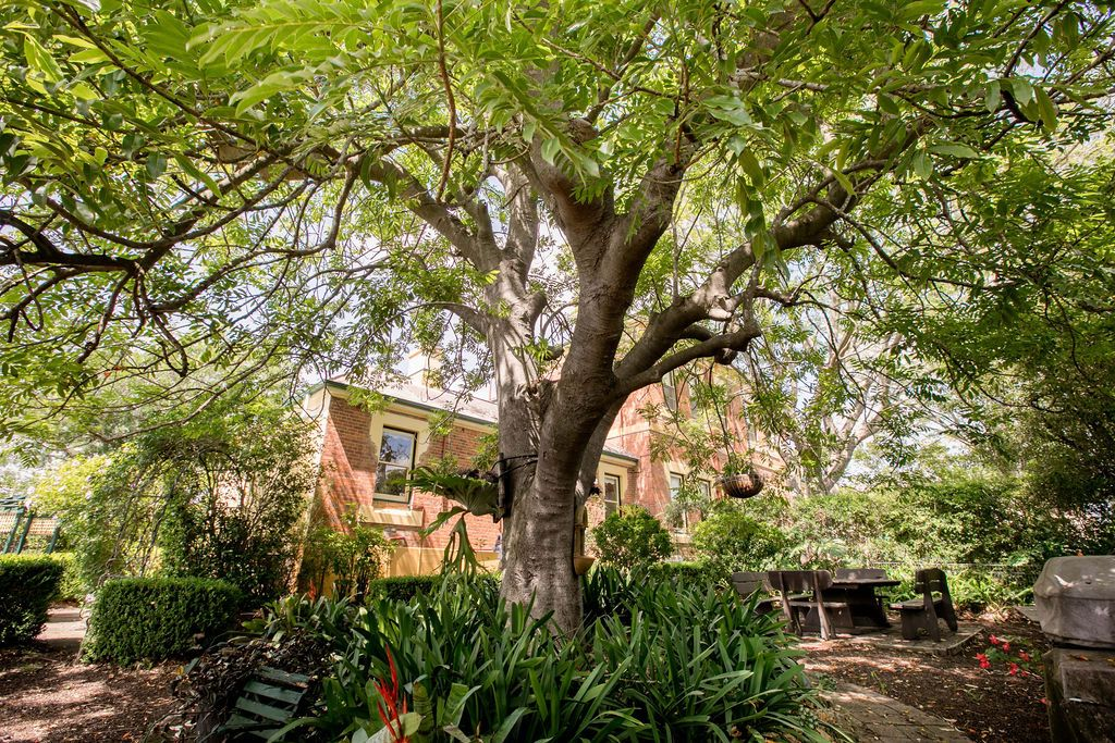 Dowling Street, Dungog NSW 2420, Image 1