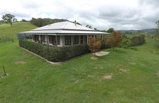 290 Belbora Creek Rd, Gloucester NSW 2422