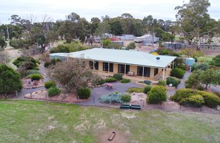 Picture of 258 Gluepot Rd, Pomonal VIC 3381