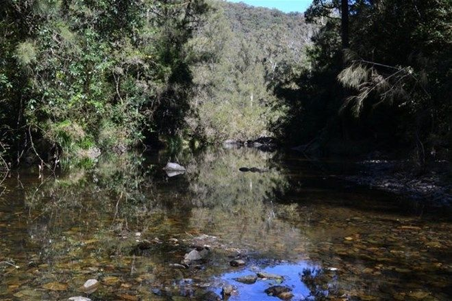Picture of 714 Fairweather Creek Rd, NYMBOIDA NSW 2460