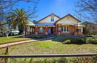 Picture of 'Bega Plains'/161 Schneiders Road, Walla Walla NSW 2659