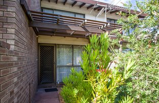 Picture of Unit 3/224 Steere Street, Collie WA 6225