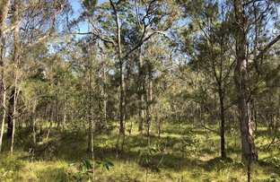 Picture of 4 Pacific Haven Circuit, Pacific Haven QLD 4659